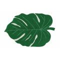 monstera-leaf.jpg.png
